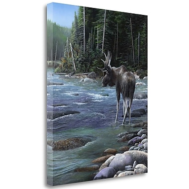 Loon Peak 'Northern Solitude' Print on Wrapped Canvas; 27'' H x 21'' W