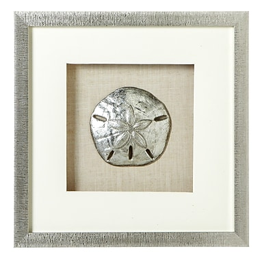Highland Dunes Sand Dollar Shadow Box Wall Decor