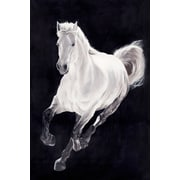Loon Peak 'White Horse' Print on Wrapped Canvas