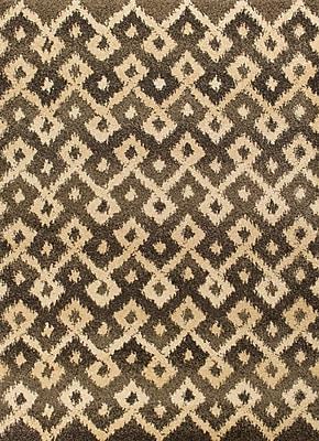 Varick Gallery Brayden Gray/Sand Villa Area Rug; 2'7'' x 4'11''