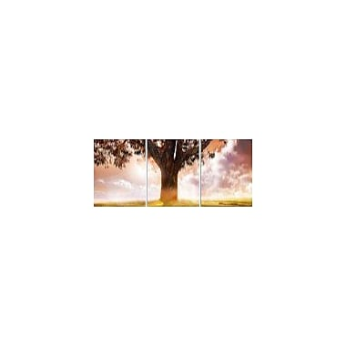 East Urban Home 'Tree of Life' Photographic Print Multi-Piece Image on Wrapped Canvas