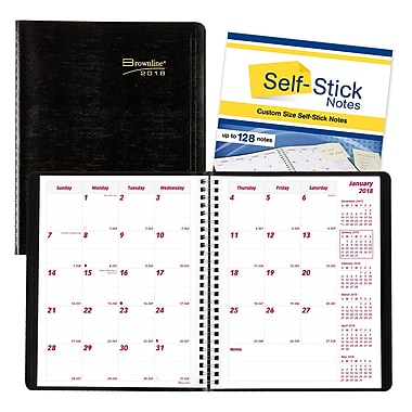 Brownline® 2018 Planner Plus Monthly Planner, 8-7/8