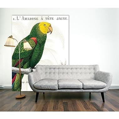 Bayou Breeze 'Parrot Botanique I' by Portfolio Framed Print on Wrapped Canvas