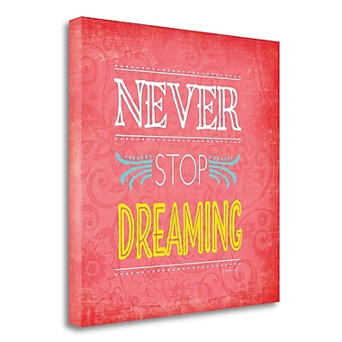 Latitude Run 'Never Stop Dreaming' Textual Art on Wrapped Canvas; 23''H x 23'' W
