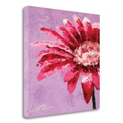 Latitude Run 'Pink is for Girls' Print on Wrapped Canvas; 23'' H x 23'' W