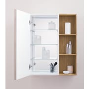 Ronbow Signature Series Tall 15.75'' W x 31.5'' H Wall Mounted Cabinet