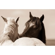 Union Rustic 'Nuzzles' Photographic Print on Wrapped Canvas