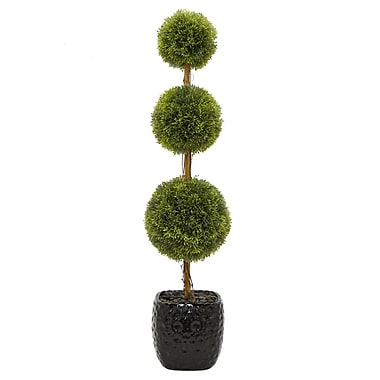 Darby Home Co Faux Desktop Boxwood Topiary in Pot