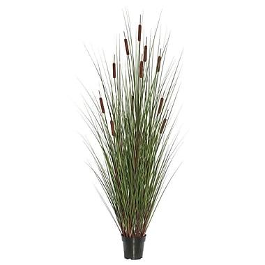 Highland Dunes Cattails Foliage Grass in Pot; 48'' H x 24'' W x 24'' D