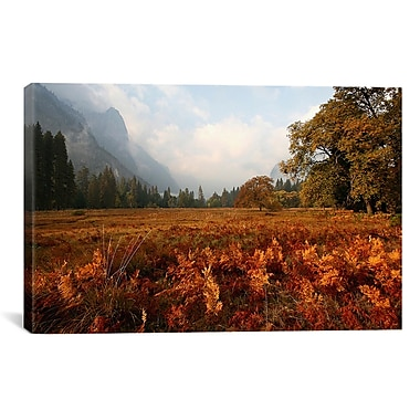 East Urban Home Meadow' Photographic Print on Canvas; 18'' H x 26'' W x 1.5'' D