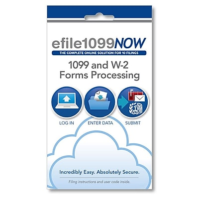 efile1099NOW, Online 1099 and W-2 Forms Processing (11015)