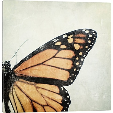 East Urban Home 'The Monarch' Photographic Print on Wrapped Canvas; 18'' H x 18'' W x 0.75'' D
