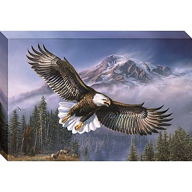 Loon Peak 'American Anthem' Gallery Graphic Art Print on Wrapped Canvas; 20'' H x 30'' W
