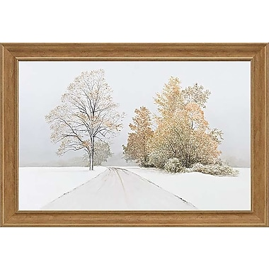 Red Barrel Studio 'Autumn Snowfall' Framed Photographic Print; 22'' H x 34'' W