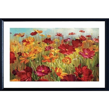 Red Barrel Studio 'Cosmos in the Field' Framed Print; 28'' H x 42'' W