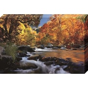 Red Barrel Studio 'River of Gold' Graphic Art Print on Canvas; 24'' H x 36'' W