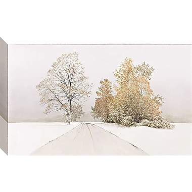 Red Barrel Studio 'Autumn Snowfall' Gallery Photographic Print on Wrapped Canvas; 7'' H x 12'' W