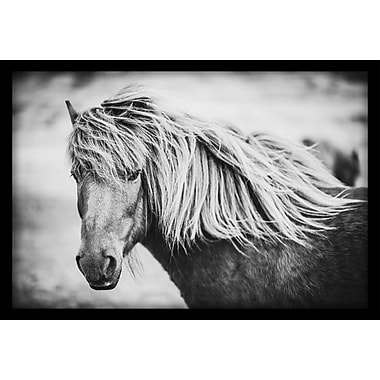 Gracie Oaks 'Beautiful Mane' Painting Print on Wrapped Canvas w/ Shadow Box; 20'' H x 30'' W