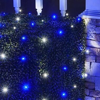 The Holiday Aisle LED 100 Light Net Light; Blue/Cool White