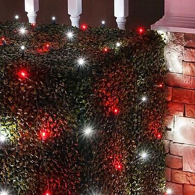 The Holiday Aisle LED 100 Light Net Light; Red/Cool White
