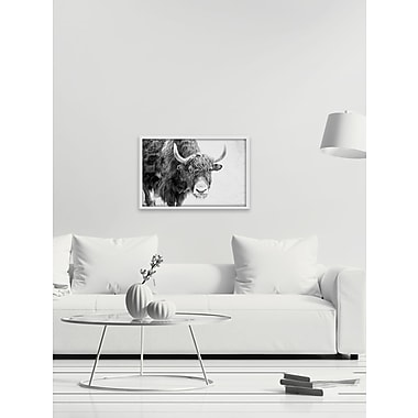 Union Rustic 'Buffalo Forward' Print on Wrapped Canvas; 20'' H x 30'' W