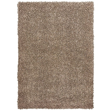 Gracie Oaks Nutley Shag Hand Tufted Brown Area Rug