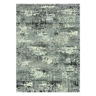 17 Stories Parinaaz Grey Rug; 3'10'' x 5'7''
