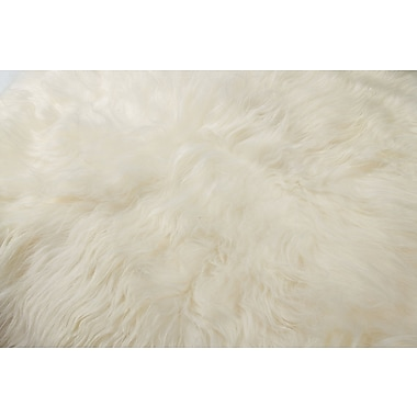 Loon Peak Curlew Hand-Woven Sheepskin White Area Rug
