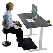 Latitude Run Juliet Rise Up Asjustable Standing Office Desk