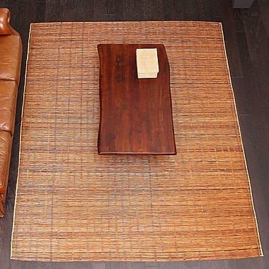Bayou Breeze Chemung Natural Hand Woven Brown Area Rug; 8' X 10'