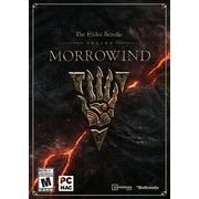 Jeu The Elder Scrolls Online: Morrowind pour PC