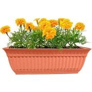 Misco Home and Garden 24'' Milano Window Box Planter (Set of 2); Clay
