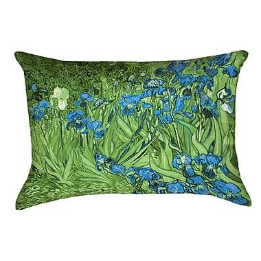 Red Barrel Studio Morley Irises Rectangle Zipper Pillow Cover; Green/Blue