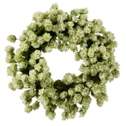 Jane Seymour Botanicals 16'' Jane Seymour Wreath