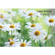 """Millbrook Studios 5-3/8"""" x 7-3/4"""" Happy Birthday To You Greeting Cards And Envelopes, 18/Pack (06240)"""