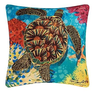 Bay Isle Home Valcour Indoor/Outdoor Throw Pillow