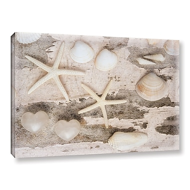 Highland Dunes 'Beach Finds IV' Photographic Print on Wrapped Canvas; 16'' H x 24'' W x 2'' D