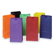 Rainbow® PAC72040 Assorted Bright Colors Bags, 28 Bags