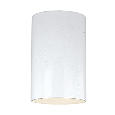 Orren Ellis Creissant 1-Light Wall Outdoor Sconce; White