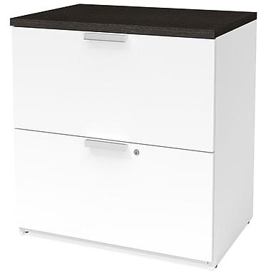 Latitude Run Hartleton 2-Drawer Lateral Filing Cabinet; White