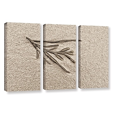 Highland Dunes 'Beach Find III' 3 Piece Graphic Art on Wrapped Canvas Set; 24'' H x 36'' W x 2'' D