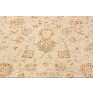Darby Home Co Leann Hand-Knotted Oriental Rectangle Wool Beige Area Rug