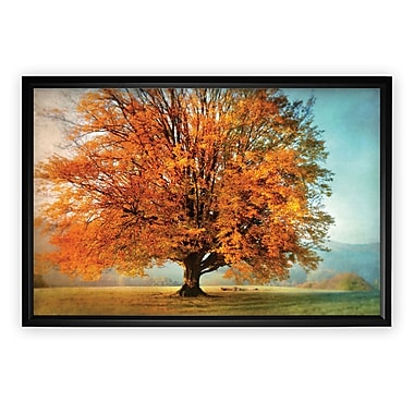 Darby Home Co 'Autumn's Passion' Rectangle Framed Oil Painting Print on Wrapped Canvas