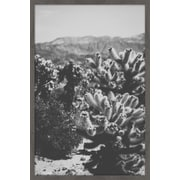 Union Rustic 'Chollo Cactus' by Ann Barnes Framed Photographic Print on Paper; 18'' H x 12'' W