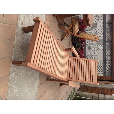 Orren Ellis Varda Wood Chaise Lounge; Clear