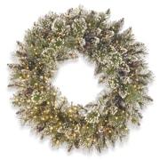 Rosdorf Park 24'' Lighted Pine Wreath