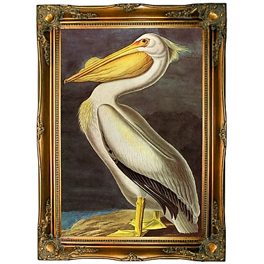 Bayou Breeze 'White Pelican' Framed Oil Painting Print on Canvas; Ornate gold frame