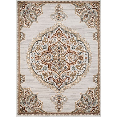 Charlton Home Lenora Light Gray Area Rug; 5'3'' x 7'3''