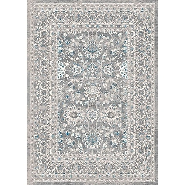 Darby Home Co Aurore Traditional Style Ash Area Rug