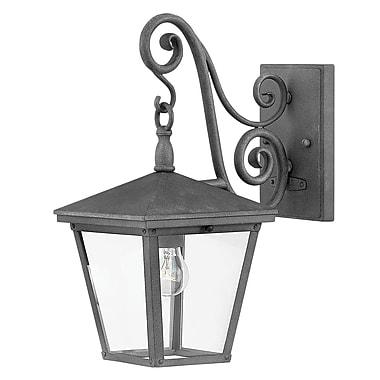 Fleur De Lis Living Alexis 1-Light Outdoor Wall Lantern